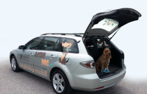 Keglodog-Mobil - unser Service-Ersatzwagen für Hundebesitzer*innen